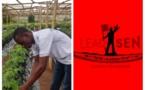 Souleymane Agne, CEO de la startup FraiSen : L'entrepreneur agronome s'investit dans la production et la commercialisation de la fraise en Afrique
