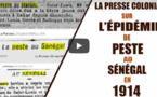 La Presse coloniale sur l'épidémie de peste au Sénégal en 1914 - Épisode 2