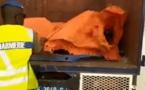 VIDEO - Arrestation d'un chauffeur pour transport irrégulier de 13 personnes cachées sous une bâche