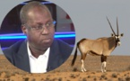 Affaire des gazelles oryx : Abdou Karim Sall menacé d'une plainte de Pds devant le Procureur