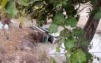 Sédhiou: Une enfant de 15 mois chute mortellement dans...