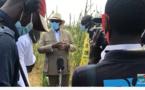 VIDEO - Déclaration de Macky Sall à Niakhar ( Tournée agricole )