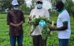 VIDEO - Macky Sall rend visite aux populations de Nioro du Rip