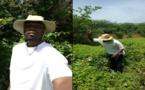 SONKO JOUE AVEC LE FEU ! Ousmane Sonko a encore « trop parlé »