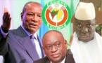 """VIDEO - Me El Hadj Diouf: """"La CEDEAO est complice du forcing d'Alpha Condé en Guinée"""""""