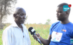 VIDEO - Commune de Ngoye: Le Chef de Village de Dara Mango décrit une situation inquiétante de la récolte