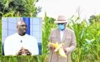 VIDEO - L'agriculture est le noyau de la relance économique : Evolution et perspectives
