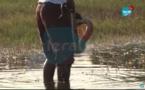 VIDEO - Incroyable: Il traque en direct 2 boas sous l'eau à Lac Rose !