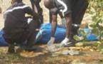Découverte macabre: Un jeune de 30 ans trouvé mort à Guinaw Rails