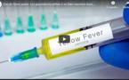 Cas de fièvre jaune: Les populations prêtes à se faire vacciner mais...