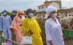 Touba 2021: Sokhna Aïda visite son troupeau pour le Magal avec ses coépouses (vidéo)