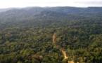 Côté Can : Les journalistes sénégalais se perdent dans la forêt équato-guinéenne pendant 2 heures