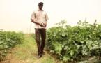 Matam - Moissonneuses batteuses, moto-pompes, grillages : Du matériel agricole pour abréger la souffrance des femmes