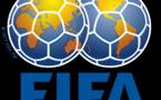 Remplacement de Amaju Pinnick par Chris Giwa :  La Fifa menace le Nigéria de suspension
