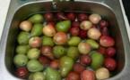Une astuce facile pour supprimer les pesticides de vos fruits et légumes
