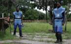 Déminage en Casamance : Chris Natale détache la fiction de la réalité