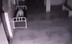 Une caméra de surveillance filme une âme quittant un corps à l'hôpital