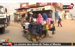 Vidéo - Absence de transports à Touba et Mbacke : les élèves s'entassent dans des charrettes en risquant leur vie