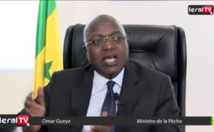 """VIDEO - Oumar Guèye: """"Le Président Macky Sall a inscrit le secteur de la pêche dans l'axe 1 du PSE"""""""