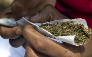 Un marabout et ses deux talibés surpris en train de fumer du chanvre indien
