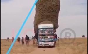 vidéos: Ils risquent leurs vies en S'amusant du haut d'un Camion