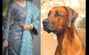«Mon mari me droguait pour que son chien couche avec moi», une femme raconte comment elle a perdu son utérus