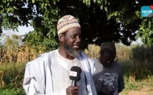 VIDEO / A la découverte de Darou Mbitéyène: Ville natale de Cheikh Ahmed Tidiane Ibrahima Niass, un fervent promoteur agricole