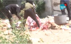 VIDEO / Gamou à Mermoz: Les Thiantacounes en pleins préparatifs
