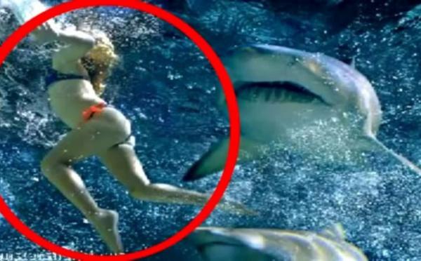 Laeticia, 17 ans, tuée par un requin sous les yeux de sa famille