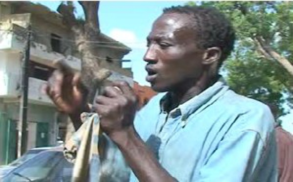 (VIDEO) Matar est très connu au marché central de Thiès. Ecoutez son nouveau tube