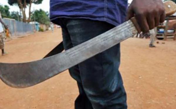 Insolite à Keur Momar Sarr : Un paysan de 70 ans condamné à 15 jours pour avoir coupé le bras de sa belle sœur avec un coupe-coupe