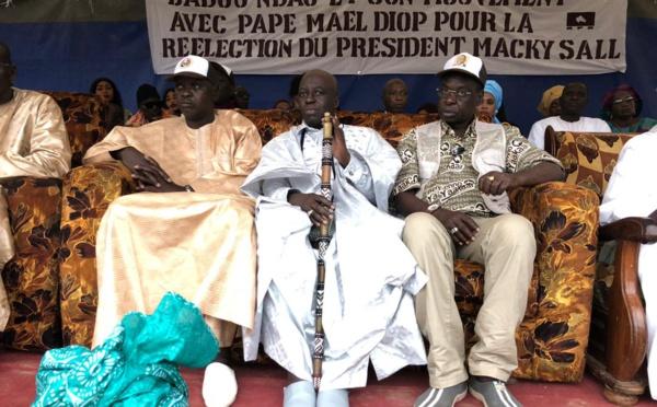 Photos : Pape Maël Diop ratisse Dakar