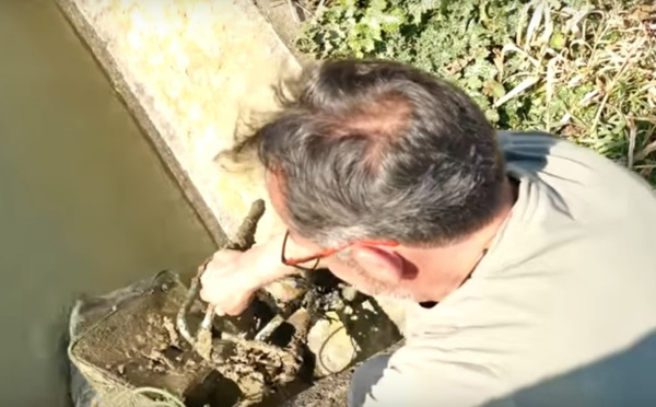 Montpellier: Il pêche un coffre-fort rempli de pièces et de bijoux et le ramène au commissariat