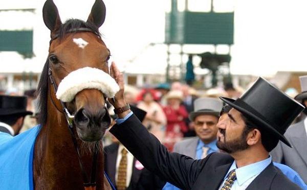 Dubaï: Cheikh Mohammed dépense plus de 4 millions de dollars pour un cheval (photos)