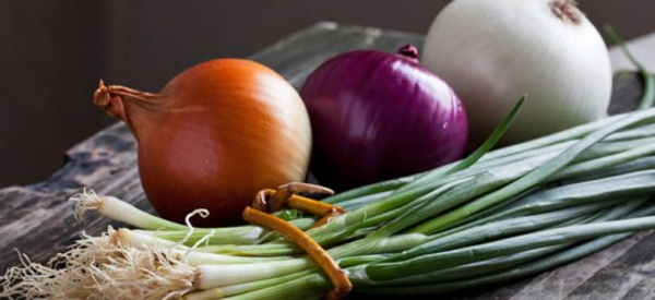 Pourquoi devrions-nous manger assez d'oignon dan nos repas ?