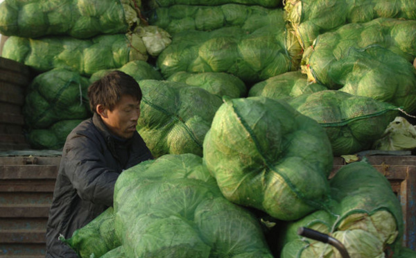 Les six plus gros scandales alimentaires chinois