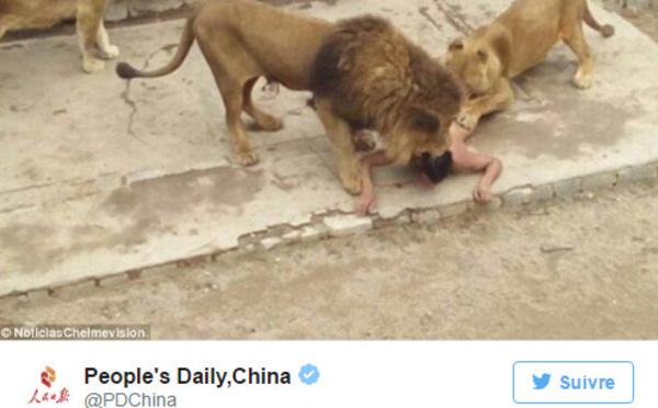 Pour en finir, il se jette nu dans la fosse aux lions