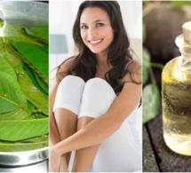 Comment éviter les mauvaises odeurs de la zone intime avec 5 remèdes maison