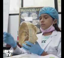 VIDEO - À 11 ans, elle rentre en faculté de médecine