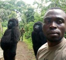 Arrêt sur image - Cette surprenante photo pourrait bien être le selfie de l'année