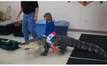 Vidéo: une fillette monte sur cet Alligator comme à cheval, regardez!!!