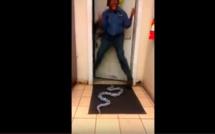 Blague avec le serpent!!! A mourir de rire. Regardez!