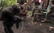 Vidéo: quand un singe sème la panique en dégainant un fusil sur des personnes