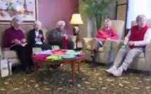 Vidéo-Ces retraitées tricotent des pulls... pour poulets