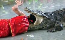 Un garçon de 8 ans a été découvert dans l'estomac d'un crocodile