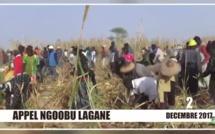 Vidéo : Appel Ngoobu Lagane 2017, Samuel Sarr fin prêt pour le Barkèlou le 2 décembre
