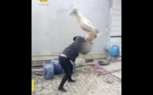 Vidéo-Il bat sauvagement son chien parce qu'il a perdu une course, avant de le manger