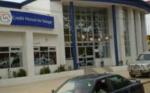 Détournement de 41 millions au Crédit Mutuel du Sénégal : Ahmadou Sarr risque 18 mois de prison