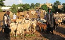 Mali: des civils peuls tués à Ouenkoro, dans le centre du pays