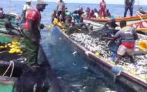 Accidents en mer à Joal: 8 pêcheurs décédés et 12 disparus en un an